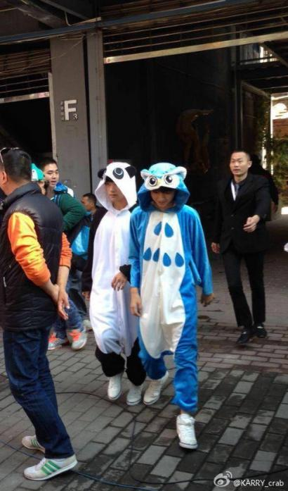 王俊凯小动物图片