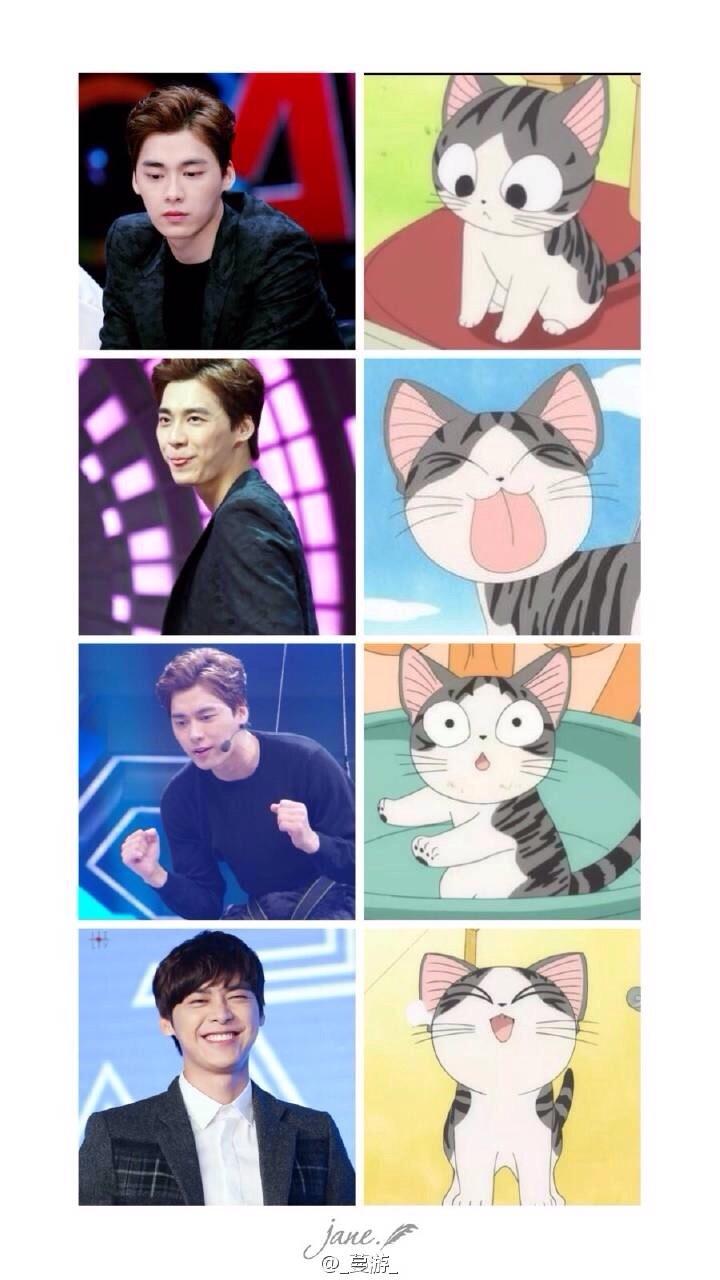 [李易峰][分享]150806 峰喵与甜甜私房猫表情神同步图片