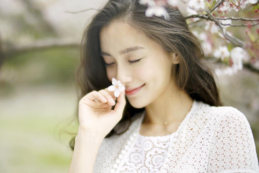 杨颖樱花海绵手绘图片