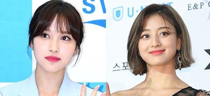 "JYP娱乐""MINA不参与新专活动...志效脖子负伤不参与舞台表演"""