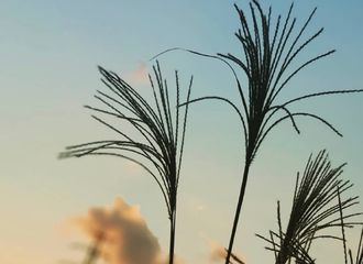 """[分享]181028 第一阶段即将结束 据悉""""阿斯达""""济州岛部分11月初杀青"""