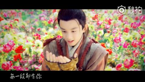 [分享]181108 分享吴磊饭制角色混剪 记录从可爱小精灵长成清朗少年的惊鸿N面