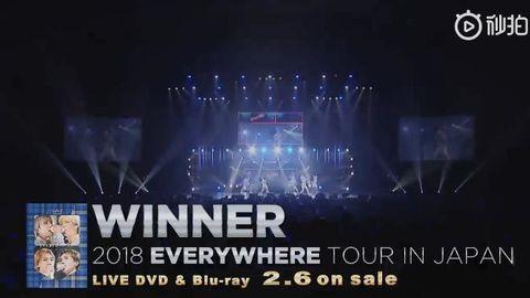 [分享]190120 日本场巡演DVD宣传视频再公开!购买DVD可收获更多帅气温拿哦~