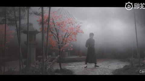 [分享]190318 饭制分享:武学天才×武学疯子 双花相遇谁更胜一筹