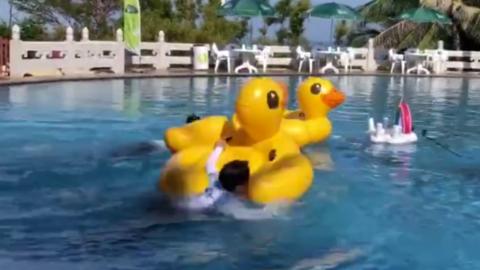 [分享]190524 《青春环游记》泳池环节 大白鹅扑腾扑腾进水里