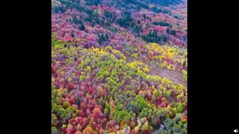 [BigBang][新闻]190807 大哥带你去欣赏这个五颜六色的缤纷世界~崔胜铉更新超美大自然,与VIP共享