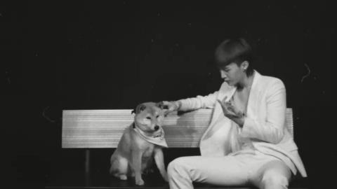 [新闻]200603 范丞丞《费加罗》默剧小剧场 狗届顶流范虫虫被迫营业很高冷