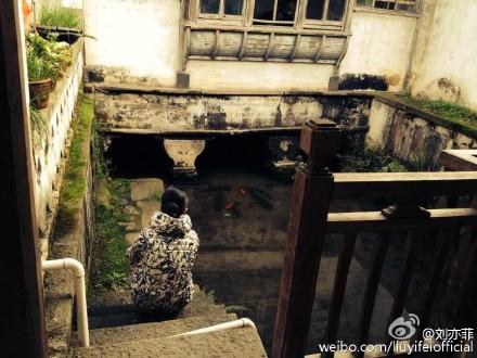 [分享]151204 暂时脱离村姑 刘亦菲一秒变包子