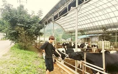 [新闻]140909 金泰亨推特更新 跟奶牛BOBO