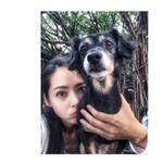 [分享]160503 郭碧婷与爱狗自拍 人不如狗系列