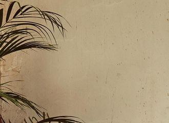[新闻]170227 GFRIEND军装风帅气变身 新曲《FINGERTIP》概念照公开