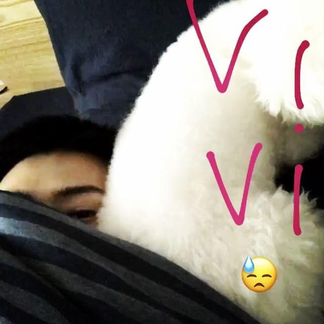 [新闻]170327 把枕头给VIVI自己睡地上 吴世勋对吴哔哔真的宠没边了!