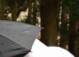 [新闻]170702 《烈火如歌》路透:来自白衣如歌温柔微笑杀