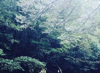 [新闻]170728 《王爱》拍摄旧照 山里拍戏排排坐
