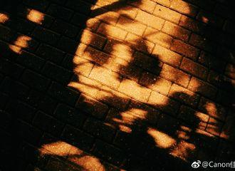[新闻]171020 鹿摄影师归来 带你领略上海秋夜的一点乡愁