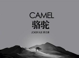 [新闻]201116 《骆驼》上线三周年 带你进入他眼中的美丽沙漠