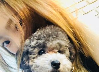 [分享]180623 久违地和爱犬见面 泰妍现身Zero个犬SNS可爱发射
