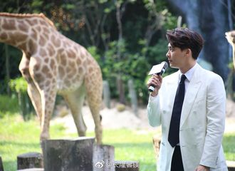 [新闻]200628 那年今日|当郑开司来到真正的动物世界 竟被长颈鹿吓到很方张