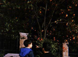 """[新闻]181017 今日份连载更新!李易峰""""千""""着小朋友来报道"""