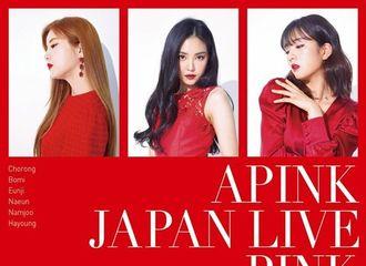 [新闻]190114 Apink将举办《PINK COLLECTION》日本单独演唱会!强大的全球影响力
