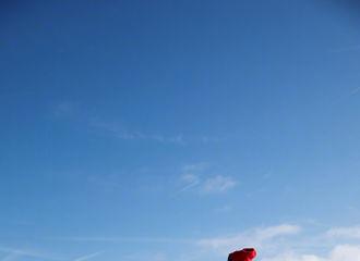 [分享]190117 西欧雪景和看雪景的鹿boss 小红帽鹿贝贝壁纸大放送