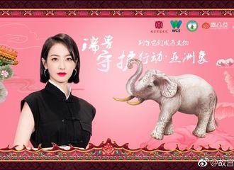 [分享]190118 宋茜成为瑞兽守护者 邀你一起守护华夏瑞兽亚洲象