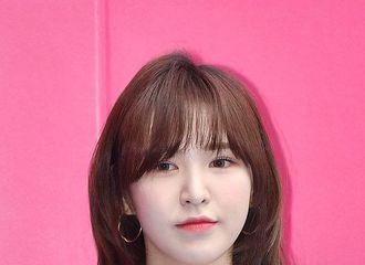 """[新闻]190320 Red Velvet Wendy亮相""""2019F/W首尔时装秀"""""""
