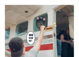 [新闻]190325 喵呜王俊凯上线 这只猫猫可以带走吗