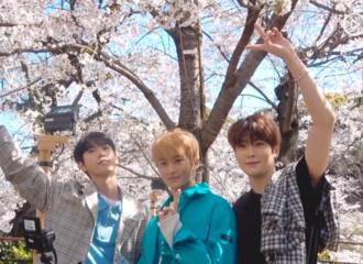 [分享]190418 樱花祭,跟随NCT的镜头一起来一场樱花约会吧