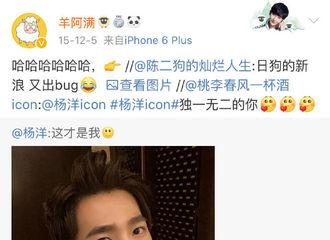 [分享]190505 那些年杨洋微博遇到的bug 自拍照变成表情包