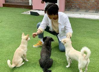 [新闻]190513 这里是金韩彬与狗狗们的和睦相处时间   韩彬是温柔的小哥哥没错了