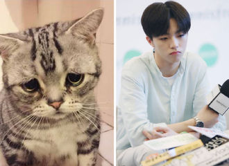 [分享]190519 猫系男友陈立农 每一个小表情都像极了小猫咪