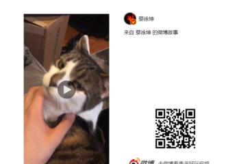 [新闻]190523 你的宠物博主已上线 蔡徐坤微博故事分享撸猫视频