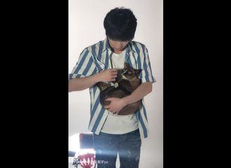 [新闻]190717 全球歌迷会官博更新华晨宇视频一则 全世界最温柔的花花哥哥和猫咪
