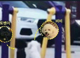 [EXO][分享]190807 经SM确认,它俩的确带着美好的情感交往中