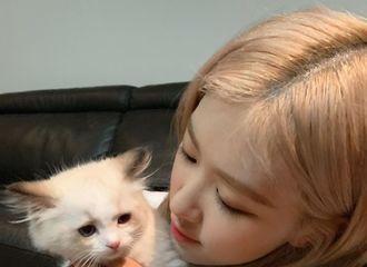 [BLACKPINK][新闻]190814 可爱的彩英和可爱的Lily~朴彩英就是世界上最奶的宝宝!