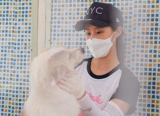[少女时代][分享]190816 超级有爱的画面!Yuri作为志愿者参加保护流浪狗公益活动