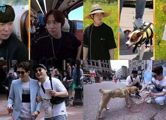 """[Super Junior][新闻]190907 《猫狗旅行》金希澈→朴施厚,与伴侣犬一起进行""""宠物之旅""""·加拿大温哥华旅行"""