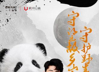 [新闻]190924 守护野生大熊猫项目爱心大使张云雷呼吁大家一起守护野生大熊猫