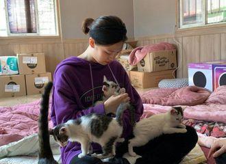 [分享]191015 定延和姐姐一同去猫咪保护所做义工 抱着猫咪的样子好温柔~