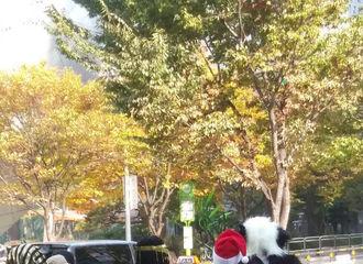 [Super Junior][分享]191028 全新装扮秀来袭!《新西游记7》圭贤变身自由女神