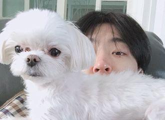 [GOT7][新闻]191121 荣宰分享与爱犬coco的合照,展示了轻松而惬意的日常