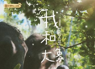 [新闻]200218 《小小的追球》第十二期抢先看 亚洲最帅气的实习象爸朱正廷亮相!