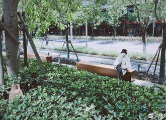 [新闻]200521 小橘日常花絮仿佛遛弯的大爷 小风筝灵魂发问引爆笑:热吗?