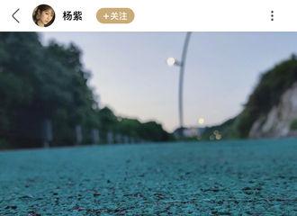 富二代app[新闻]200531 你的摄影博主杨紫已上线 绿洲分享突然发现的小风景