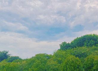 [新闻]200807 摄影博主带着节气播报上线 杨紫更新绿洲动态:「立秋」