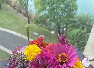 [新闻]200920 王俊凯深夜绿洲分享鲜花照 杀青的记忆也有好好保存