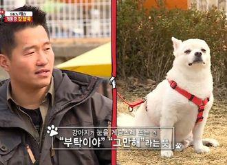 [分享]200921 小狗眯着眼睛的意思是?梦龙的心你不要猜~