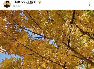 [分享]201030 王俊凯绿洲图照合集 仪式感满满的小凯