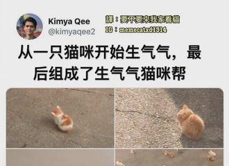[分享]201205 前方有一帮生气气的王俊凯向你袭来 快来哄哄这些小可爱